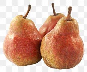 Pear Fruit - Fruit Asian Pear PNG