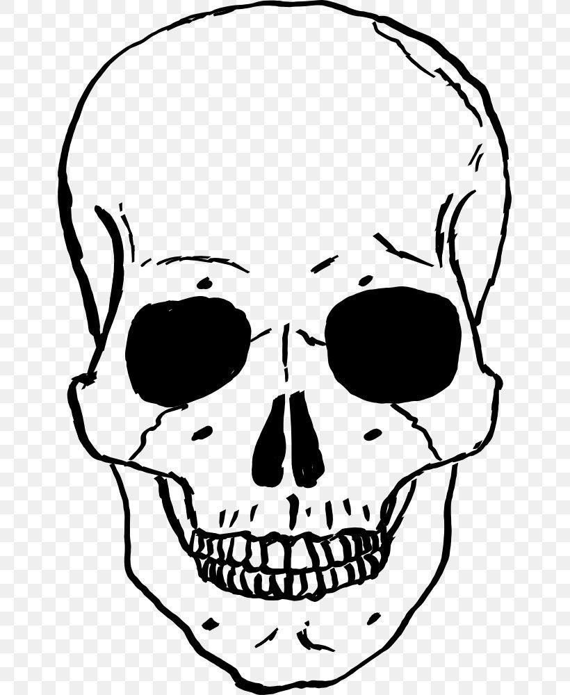 Skull Human Skeleton Drawing Clip Art Png 653x1000px Skull Artwork Black And White Bone Drawing Download