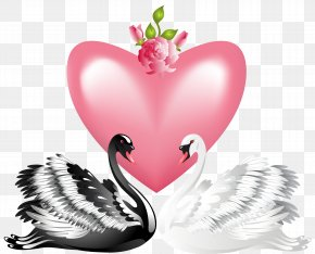 Valentine's Day Love Swans Transparent PNG Clip Art Image - Swan Valentine's Day Heart Clip Art PNG