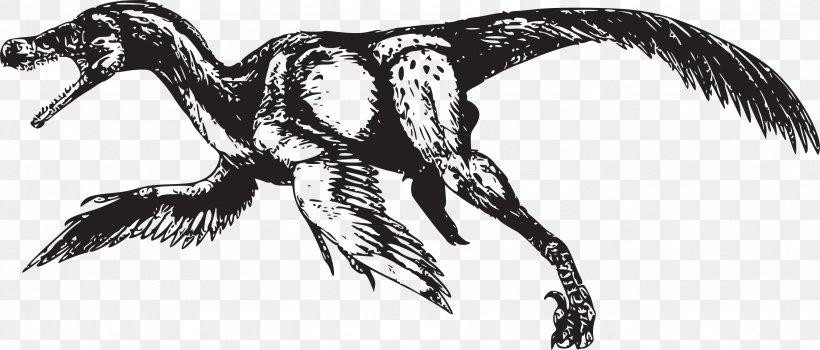 Bambiraptor Velociraptor Bird Tyrannosaurus Dinosaur, PNG, 2659x1135px, Bambiraptor, Art, Beak, Bird, Black And White Download Free