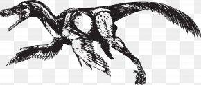 Flying Dinosaurs - Bambiraptor Velociraptor Bird Tyrannosaurus Dinosaur PNG