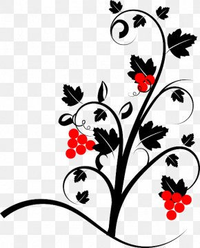 Grape Vine - Common Grape Vine Clip Art PNG