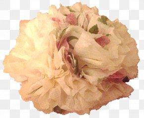 Flower - Cut Flowers Flower Bouquet Cabbage Rose Floral Design PNG