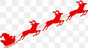 Reindeer - Reindeer Santa Claus Sled Christmas PNG