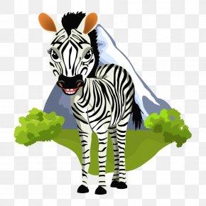 Zebra - Zebra Clip Art PNG