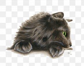 Figure Painted Cat - Norwegian Forest Cat Persian Cat Kitten Watercolor Painting Cat Lady PNG