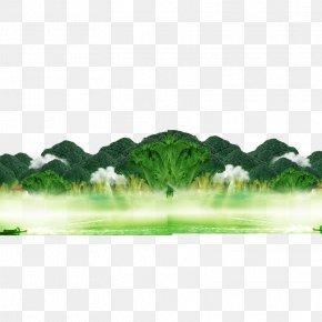 Green Vegetables Broccoli - Broccoli Cauliflower Cabbage Vegetable PNG