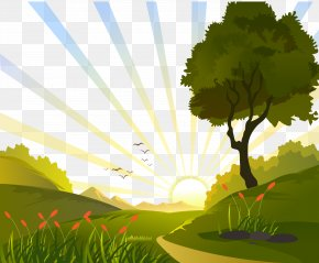 Sunrise In The Field Vector Illustration - Euclidean Vector Clip Art PNG