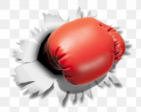 Boxing Gloves - Boxing Glove Punching & Training Bags PNG