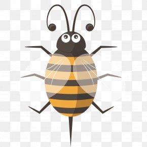 Cute Cartoon Bee - Bee Euclidean Vector PNG