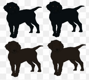Labrador Dog - Labrador Retriever Flat-Coated Retriever Puppy Dog Breed Companion Dog PNG