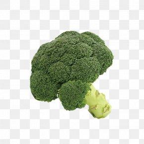 Broccoli - Broccoli Cauliflower Vegetable PNG