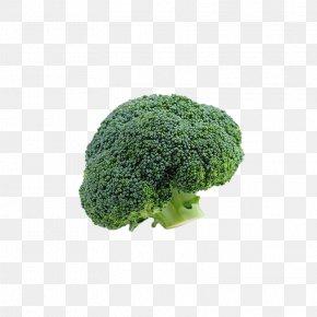 Broccoli - Broccoli Vegetable Cauliflower PNG