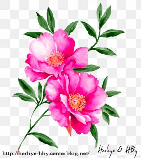 Flower - Watercolour Flowers Watercolor Painting Floral Design Drawing PNG