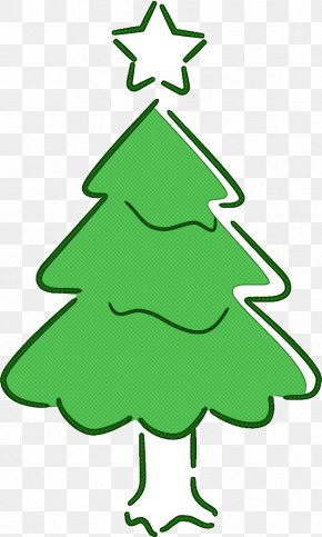 Pine Spruce - Christmas Tree PNG