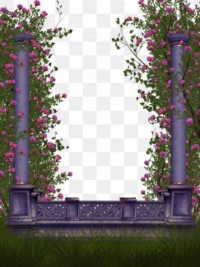 Lace Border - Rose Flower PNG