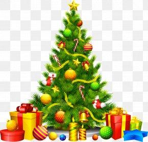 Christmas Tree - Christmas Tree Festival Cranbrook Christmas Day Wall Decal Clip Art Christmas PNG