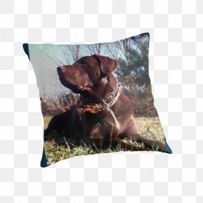 Chocolate Lab - Dog Breed Throw Pillows Cushion PNG