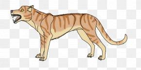 Lion - Lion Dog Tiger Cougar Liger PNG