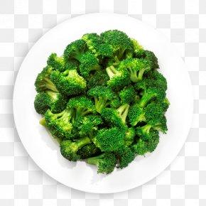 Broccoli - Broccoli Slaw Cauliflower Vegetable Food PNG