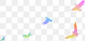 Floating Colored Birds - Bird Computer File PNG