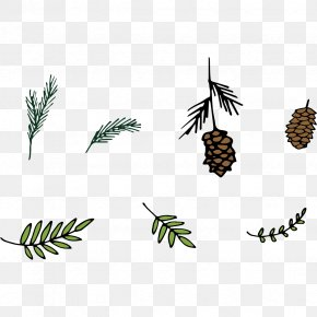 Matsutake Pine Leaves Vector Elements - Pine Leaf Euclidean Vector PNG