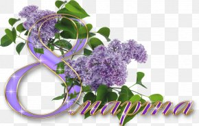 March 8 - International Women's Day March 8 Digital Image Clip Art PNG