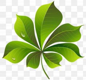 Fall Green Leaf Clipart Image - Leaf Green Clip Art PNG