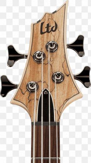 Bass Guitar - Bass Guitar ESP LTD EC-1000 Acoustic-electric Guitar ESP LTD B205SM Musical Instruments PNG