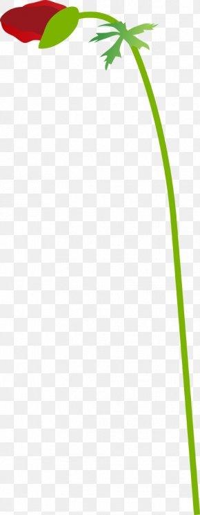 Leaf - Green Grasses Plant Stem Leaf PNG