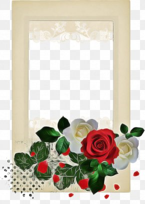 Holly Christmas Decoration - Christmas Decoration Drawing PNG