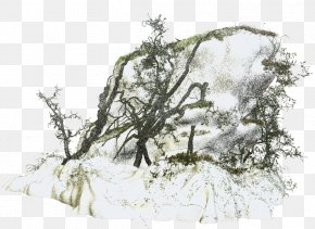 Snow Branch - Winter Snow Clip Art PNG