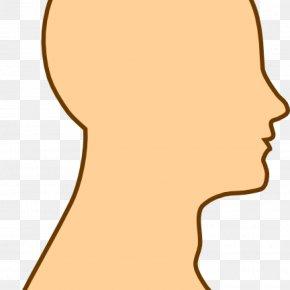 Brain - Brain Human Head Clip Art PNG
