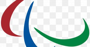 International Paralympic Committee 2016 Summer Paralympics Olympic Games Athlete Disability PNG