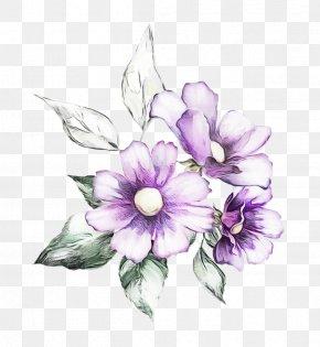 Wildflower Flowering Plant - Flower Violet Petal Purple Plant PNG