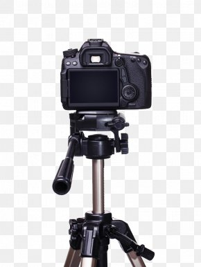 Camera Free To Pull - Single-lens Reflex Camera Digital SLR Photography Tripod PNG