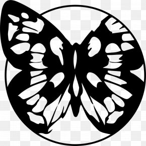 Swallowtail Butterfly Coloring Book - Butterfly Stencil PNG