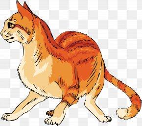 Cat - Cat Kitten Clip Art PNG