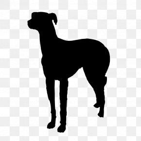 Dogs Vector - Italian Greyhound Pet Sitting Dog Walking Dog Breed PNG