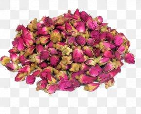 Rose Tea - Flowering Tea Beach Rose Drying PNG