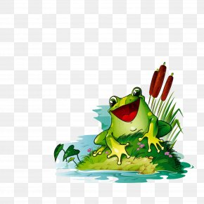 Frog - Frog Animation PNG