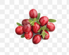 Dates - Barbados Cherry Organic Food Cranberry Juice Apple Juice PNG