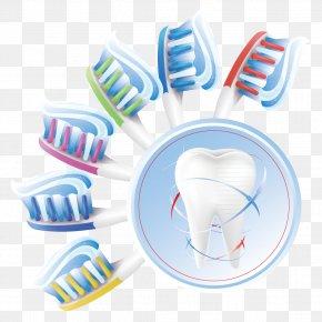 Toothbrush Teeth - Human Tooth Dentistry Teeth Cleaning PNG