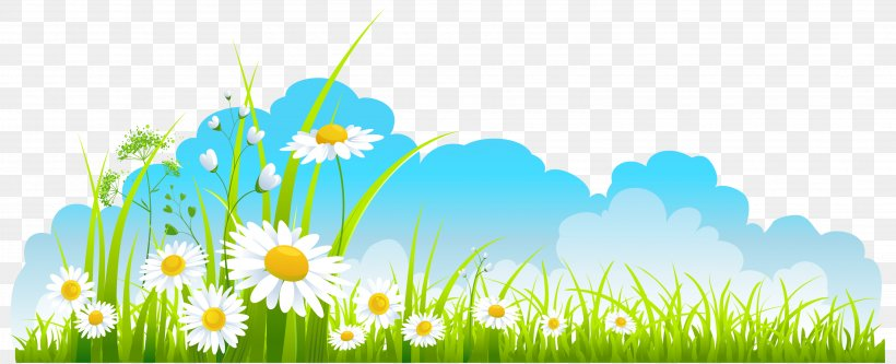 Spring, PNG, 3715x1509px, Spring, Blog, Commodity, Daisy, Dandelion Download Free