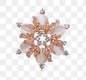 FREE Snowflake SchemaSnowflake Brooch - Brooch Snowflake PNG