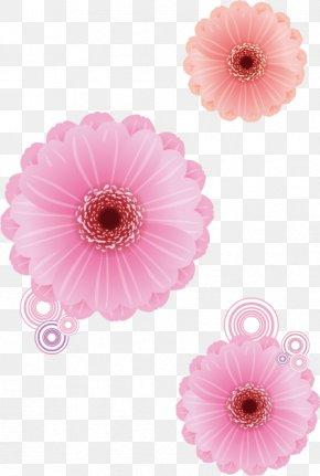 Vector Flower - Transvaal Daisy Pink Flower Euclidean Vector Rose PNG