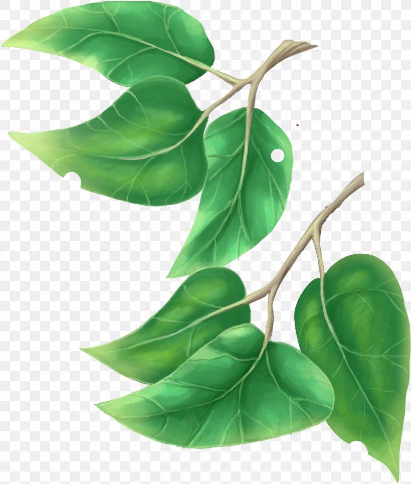 Leaf Tree Plant Clip Art, PNG, 1399x1647px, Leaf, Blue, Branch, Fruit, Green Download Free
