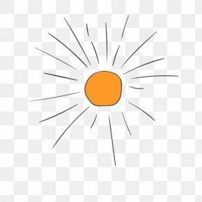Sun Element - Euclidean Vector Icon PNG