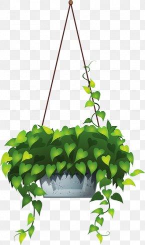 Plant - Plant Hanging Basket Clip Art PNG