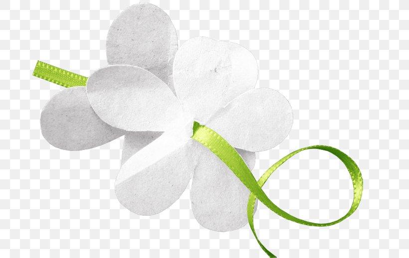 Petal Cut Flowers, PNG, 690x518px, Petal, Cut Flowers, Flower, Flowering Plant, White Download Free